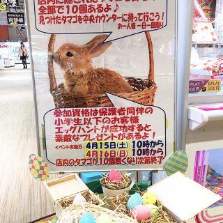 楽市楽座 京都桂川店 イースター特別イベント♪
