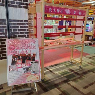 恋木神社 絵馬結びイベント開催‼️